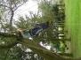 2006-05-21 Scout Camp