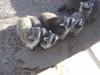 tweddle_farm_24_20091010_1385984432