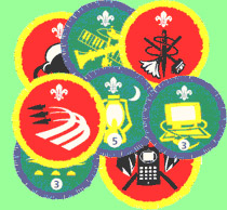 Cub Awards & Badges | 1st St  Helen Auckland Scout Group